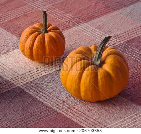 Two different sized orange pumpkins on a table with a plaid cloth
