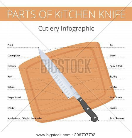 Kitchen knife parts infographic with callouts: blade, bolster, handle, spine, edge, butt, heel. Flat illustration of cutlery on the wooden cutting board. Vector diagram isolated on white background.