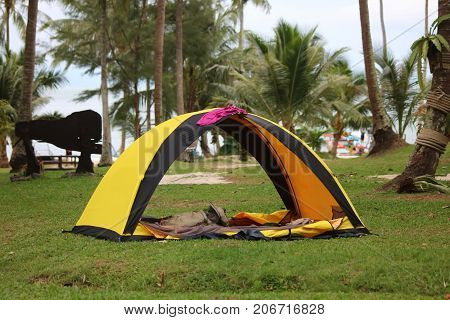 Camping Tents on the lawn on the coconut beach Samui island Thailand.