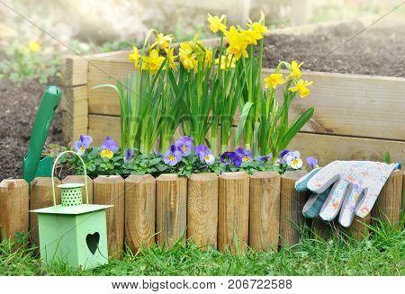 flowerbed in spring border by wood in garden