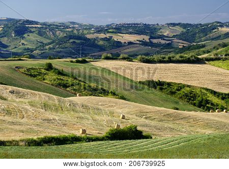 Country landscape in Romagna (Italy) along the road from Sogliano al Rubicone to Secchiano at summer. Fields