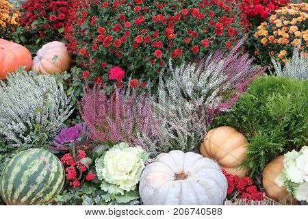 Beautiful colorful still life with lot of flowers and autumn vegetables