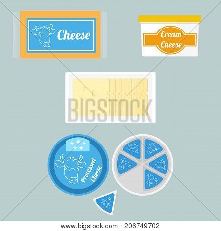Vector colorful set illustration different types of cheese in the package