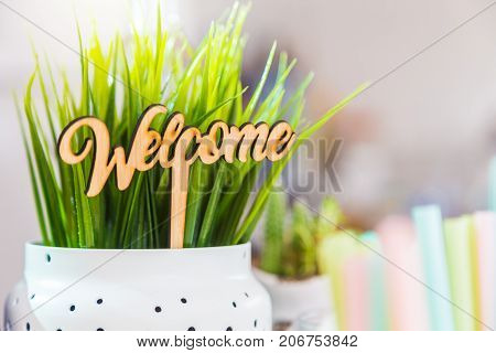 little wooden welcome sign in a white plant pot in pastel look with selective focus good for welcoming and feel good concept