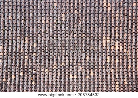 Antic Tile texture on the roof of an old Turaida castle in Latvia. Architecture background