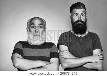 Old and young bearded men with long beard white and brown and raised eyebrow on surprised faces in studio on grey background