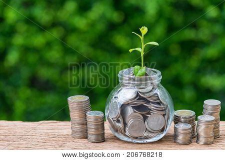 Stack of coins and jar with full of coins with growth sprout plant as investment concept.