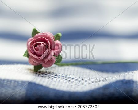 Select focus at pink artificial flowers. pink artificial flowers made of paper and placed on blue cloth stripes. Green artificial leaves are around artificial flowers.