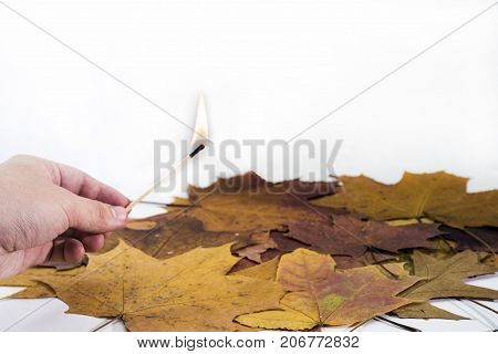 Hand With Burning Match On Maple Leaves Background.