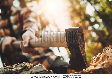 Strong Lumberjack In Plaid Shirt Holding Ax In His Hands And Chopping Tree In Forest. Axe Close Up.