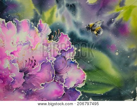 Bumblebee landing on purple Rhododendron flower .Picture created with watercolors.