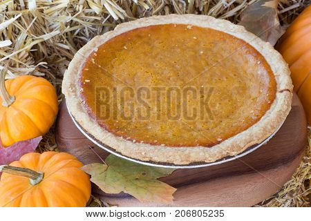 Whole pumpkin pie with small pumpkins on straw bale