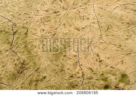 Texture on parched soil, cracks and blotches