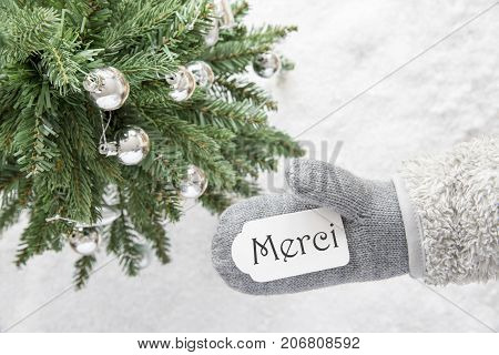 Glove With Label With French Text Merci Means Thank You. Green Christmas Tree With Silver Balls On Snow In Background. Seasonal Greeting Card With Snowflakes.