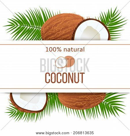 Ripe Coconuts And Palm Leaves With Text 100 Percent Natural. Whole And Cracked