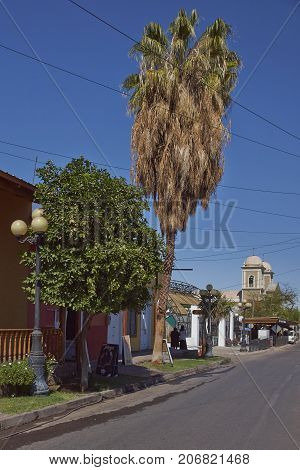 Pica, Tarapaca, Chile - August 28, 2017: Colourful buildings along a tree lined street in the small village of Pica in the Atacama Desert, Tarapaca, Chile.