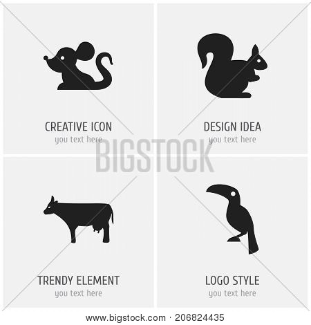 Set Of 4 Editable Animal Icons. Includes Symbols Such As Kine, Wild Rodent, Toucan And More