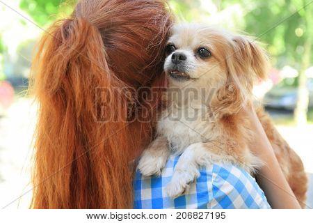 Woman holding dog. Adoption concept