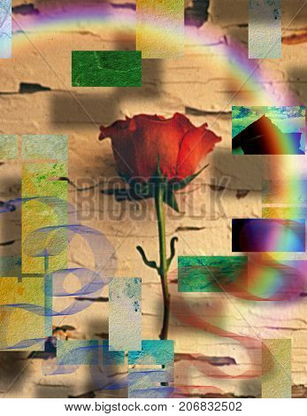 Modern art. Red rose on abstract background. 3D Rendering