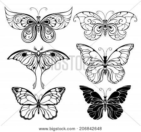 Set of artistically drawn outline black butterflies on a white background. Butterflies. Element of design.