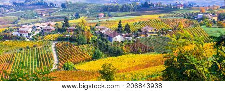 Pictorial countryside and beautiful vineyards of Piemonte in autumn colors