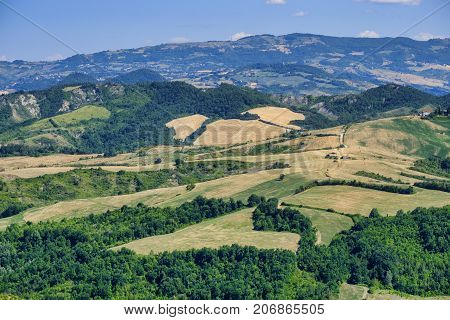 Country landscape in Romagna (Italy) from Sogliano al Rubicone at summer.