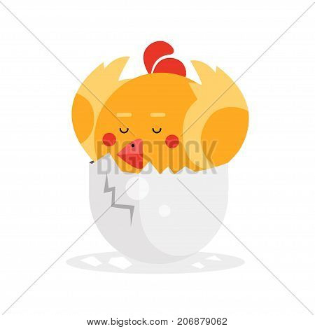 Cute newborn yellow bird character, funny nestling in egg cartoon vector Illustration on a white background
