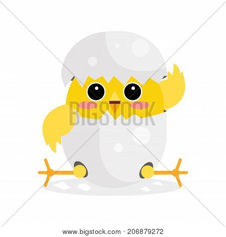 Cute newborn yellow chicken character, funny nestling in egg cartoon vector Illustration on a white background