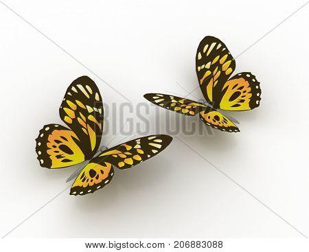 3d butterfly concept 3d . 3d rendered illustration