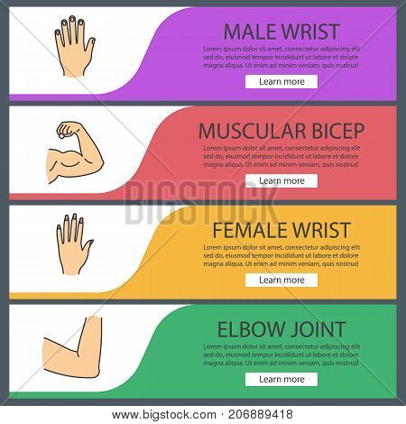 Human body parts web banner templates set. Male and female hands, muscular bicep, elbow joint. Website color menu items. Vector headers design concepts