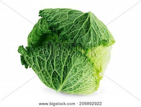 Cabbage isolated on a white background Green, White, Isolated, Ripe, Cabbage, background, Color, Object, Vibrant, Close-up, Bright, Single, Studio, Human,
