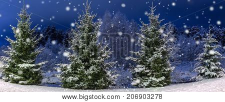Winter night panoramic landscape. Christmas trees covered with snow. Fairy-tale snow and festive mood. Panorama