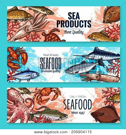 Seafood market product banners templates of fresh squid, lobster crab or flounder and salmon, tuna or octopus and prawn shrimp, ocean trout with spats and herring. Vector sketch sea fish food