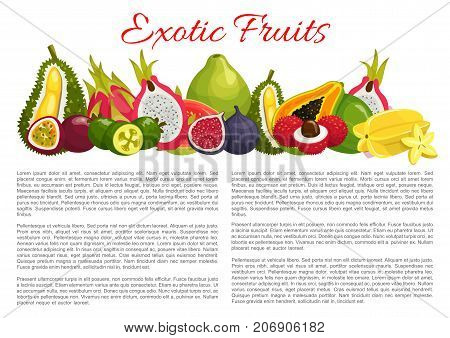 Exotic fruits information poster template on nutrition facts. Vector harvest of tropical figs, durian or papaya and lychee, organic farm pitahaya, passionfruit or carambola and juicy tropic guava