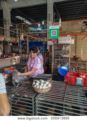 ZhongshanChina-September 10 2017:poultry retailer in Chinese market with a Wechat QR code payment.QR code for payment and money transfering becomes very common and popular in China