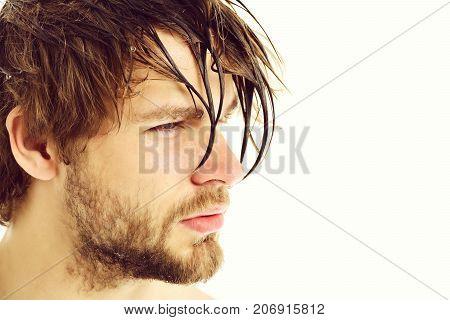 Macho With Fair Beard, Serious Face And Wet Hair