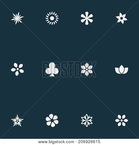 Elements Apple Blossom, Gerberas, Morning Glory And Other Synonyms Stephanotis, Clover And Bay.  Vector Illustration Set Of Simple Flower Icons.