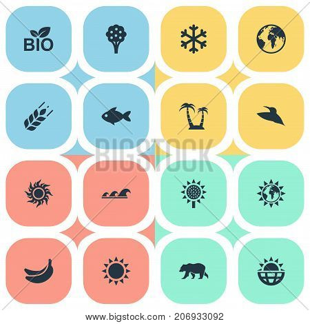 Elements Reef, World, Sun And Other Synonyms Ocean, Weather And Aquatic.  Vector Illustration Set Of Simple Ecology Icons.