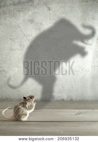 Mouse with shadow of an elephant, ambitious potential concept