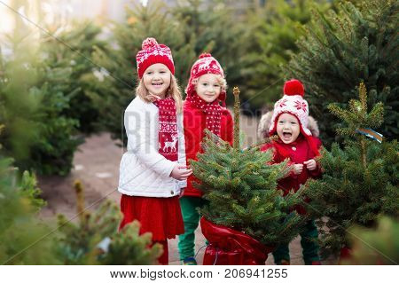 Kids Selecting Christmas Tree. Xmas Gifts Shopping.