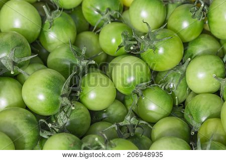 Green tomatoes in a basket on a fruit farmers Sunday market. Detailed close up with vivid shiny colors. Concept for organic bio ecology eco homegrown healthy regional autumn food.