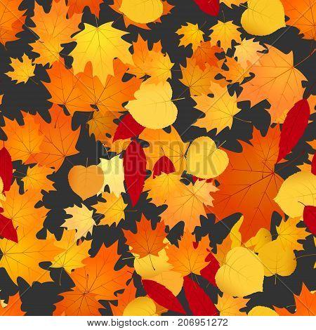 Foliage Background Illustration