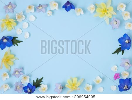 Garden flower pattern made of delphinium jasmine carnation ans aquilegia. Flat lay top view. Floral botanic frame.