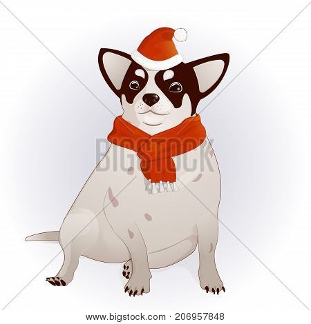 Year of the Dog. New Year s mascot on the Eastern calendar. Chihuahua, Dog-comic drawing, in the cap of Santa Claus. Santa Claus. With a red scarf around his neck. Charming, homemade pet. Vector illustration