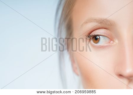 Eyes. Closeup Of Beautiful Female Brown Eye