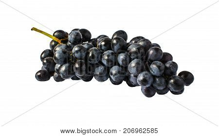 Black Grapes With Water Drops