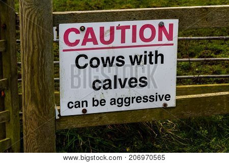 Sign Caution Cows With Calves Can Be Aggressive.