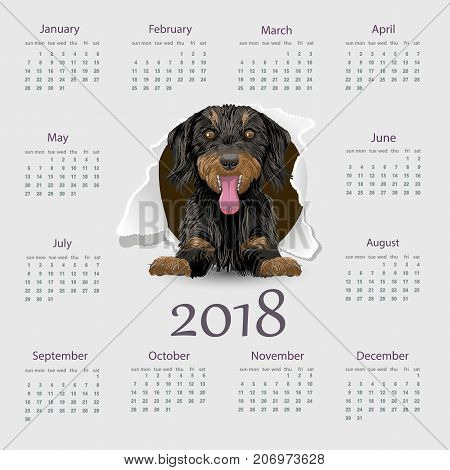 Calendar 2018 year with dog vector design template, Week starting on Sunday. EPS10