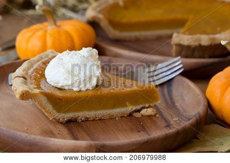 Slice of pumpkin pie with whipped cream topping