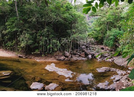 Small mountain stream in the shade of the tropical forest with snag tree in the foreground Mu Koh Chang National Park, Chang island, Thailand. Path to the Khlong Phlu waterfall. Natural background.